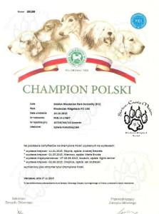 sirius-canis-maior-shana-rhodesian-park-dolomity-kennel-fci-badania-3